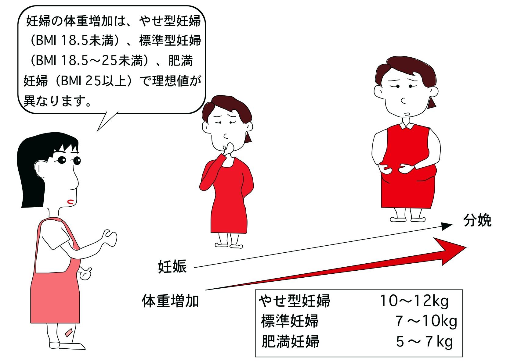 体重 妊娠 増加 初期