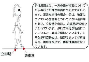 歩行周期.png