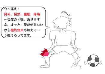炎症の4徴.png