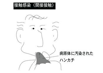 間接感染.png