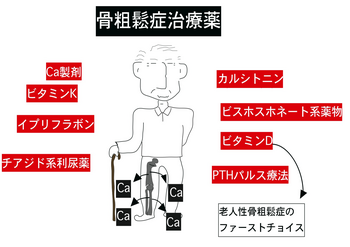 骨粗しょう症治療.png